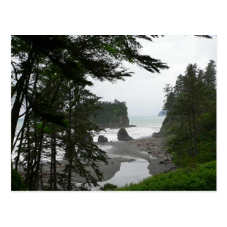 Ruby Beach Postcard