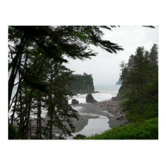 Ruby Beach Postcard