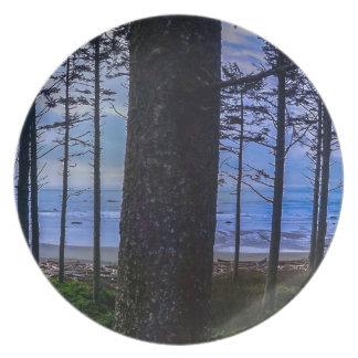 Ruby Beach sea shore Melamine Plate