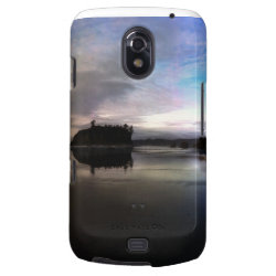 Ruby Beach Sunset Reflection Samsung Galaxy Nexus Cover