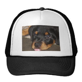 Ruby Bored Trucker Hat