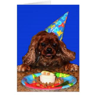 Ruby Cavalier Birthday Card