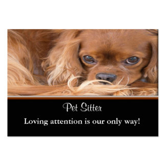 Ruby Cavalier King Charles Spaniel Business Cards