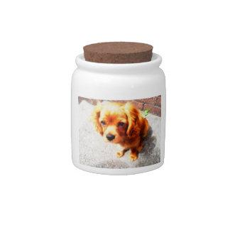 Ruby Cavalier King Charles Spaniel Candy Jar