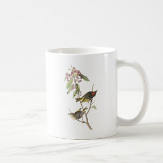 Ruby-crowned Kinglet by Audubon Coffee Mug