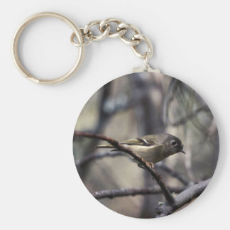 Ruby-crowned kinglet key chains