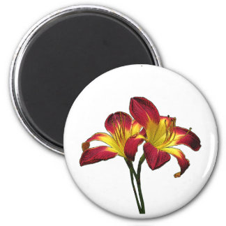 Ruby Daylily Floral Magnet