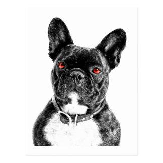 Ruby Eye'd Bulldog Postcard