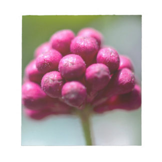 Ruby flower offers' memo notepads