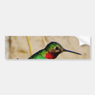 Ruby Green hummingbird Bumper Sticker