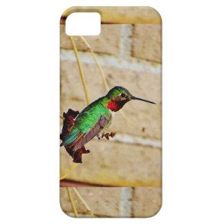 Ruby Green hummingbird iPhone 5/5S Case