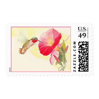 RUBY T HUMMINGBIRD & MORNING GLORY FLOWERS STAMPS! POSTAGE