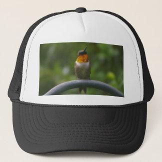 Ruby Throat Hummingbird Trucker Hat
