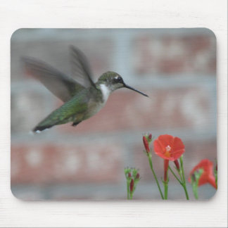 Ruby-throat & Morning Glory Mousepad