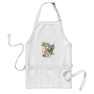 Ruby-throated Humming Bird Audubon Birds America Adult Apron