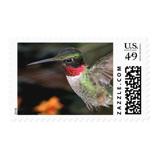 Ruby-Throated Hummingbird 2004_0247a Postage