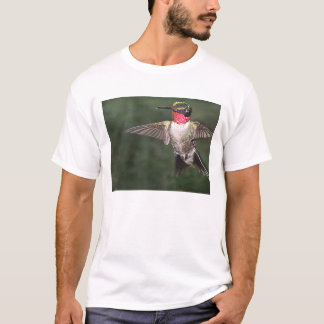 Ruby-Throated Hummingbird 2005-0128 T-Shirt