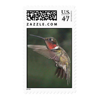Ruby-Throated Hummingbird 2005_0721a Postage