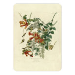 "Ruby-throated Hummingbird 5"" X 7"" Invitation Card"
