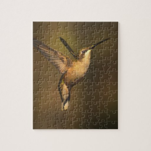 Ruby Throated Hummingbird - A Beauty Puzzles