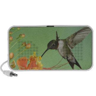 Ruby-throated Hummingbird, Archilochus 2 Travel Speakers