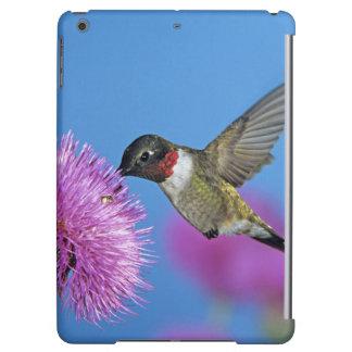 Ruby-throated Hummingbird, Archilochus 4 iPad Air Cover