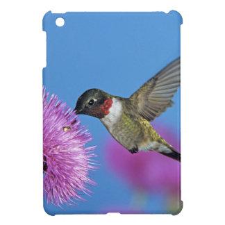 Ruby-throated Hummingbird, Archilochus 4 iPad Mini Cases