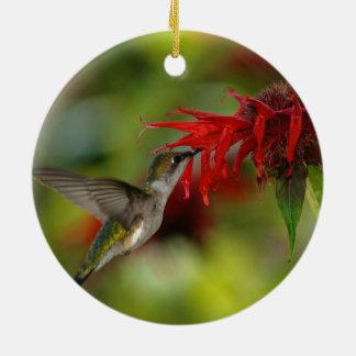 Ruby-Throated Hummingbird Archilochus Colubris Ceramic Ornament