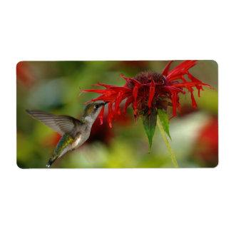 Ruby-Throated Hummingbird Archilochus Colubris Label