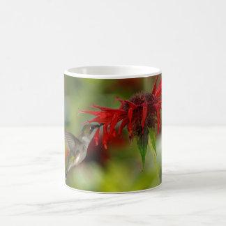 Ruby-Throated Hummingbird Archilochus Colubris Classic White Coffee Mug