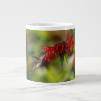Ruby-Throated Hummingbird Archilochus Colubris 20 Oz Large Ceramic Coffee Mug