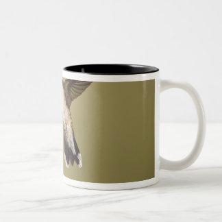 Ruby-throated Hummingbird Archilochus Two-Tone Coffee Mug