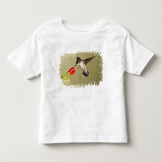 Ruby-throated Hummingbird Archilochus Toddler T-shirt