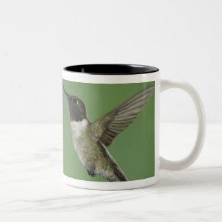 Ruby-throated Hummingbird, Archilochus Two-Tone Coffee Mug