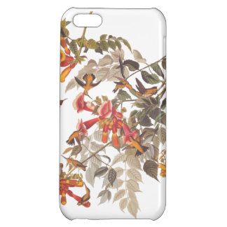 Ruby Throated Hummingbird Audubon Tropical Art iPhone 5C Cases