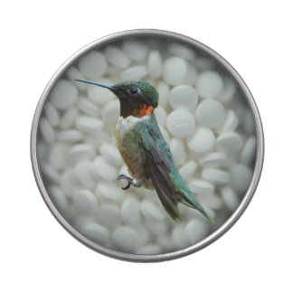 Ruby-Throated Hummingbird Bird Photography Jelly Belly Tins