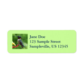 Ruby-Throated Hummingbird Bird Photography Label