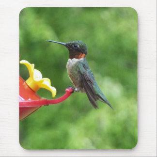 Ruby-Throated Hummingbird Bird Photography Mouse Pad