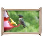 Ruby Throated Hummingbird Bird Photography Serving Trays