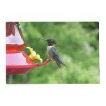 Ruby-Throated Hummingbird Bird Photography Placemat