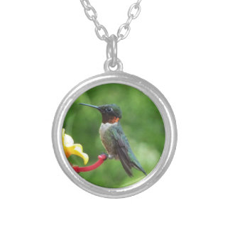 Ruby-Throated Hummingbird Bird Photography Silver Plated Necklace