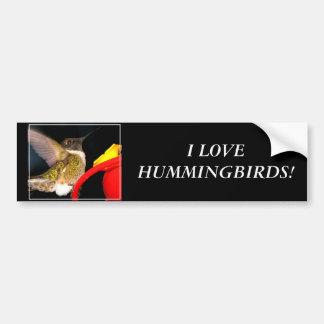 Ruby-Throated Hummingbird Car Bumper Sticker