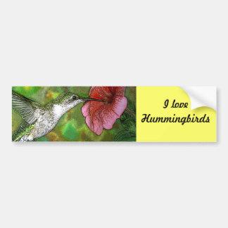 Ruby throated Hummingbird Car Bumper Sticker