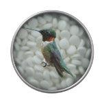 Ruby-Throated Hummingbird Candy Tin