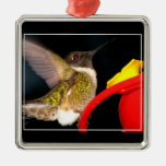 Ruby-Throated Hummingbird Christmas Ornaments