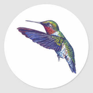 Ruby Throated Hummingbird Classic Round Sticker