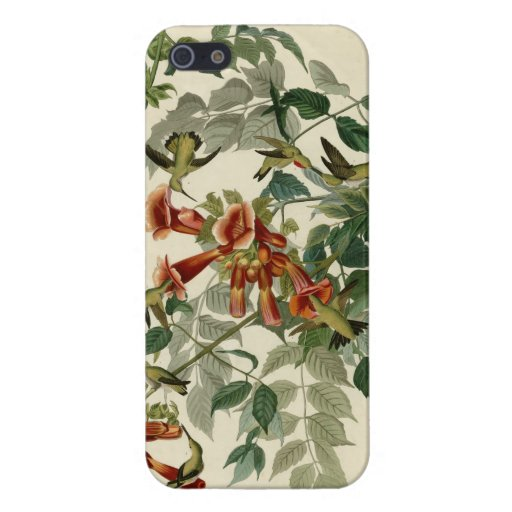 Ruby-throated Hummingbird Cover For iPhone 5/5S