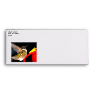 Ruby-Throated Hummingbird Envelope