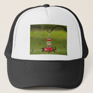 Ruby Throated Hummingbird Feeding Frenzy Trucker Hat