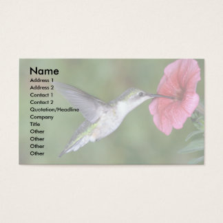 Ruby-throated Hummingbird (female) with petunia Business Card